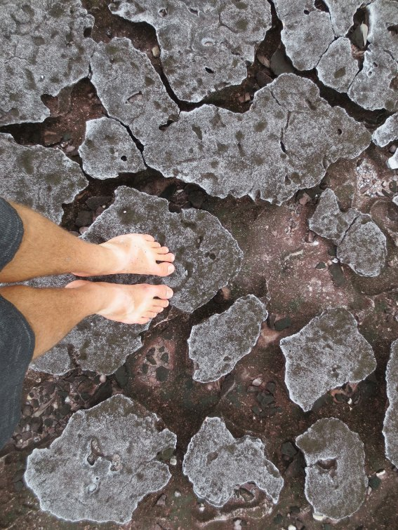 My feet on some rocks at Bako National Park