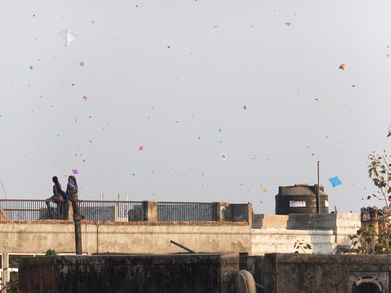 Kites over the roofs of Ahmedabad