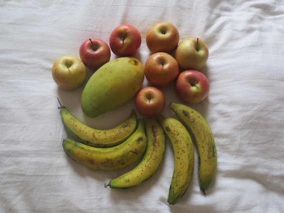 Less than $2 US worth of fruit