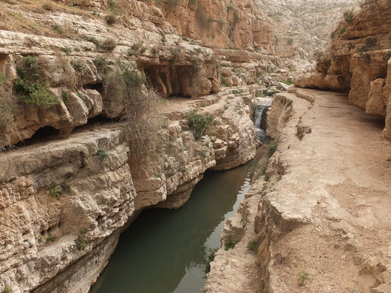 River from the Wadi Qelt trek